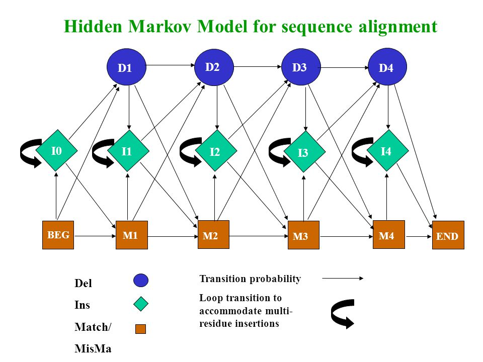 Hidden Markov Model for sequence alignment BEG D1 D2 D3 D4 I0 I1 I2 I3 I4 M1 END M4 M3 M2 Del Ins Match/ MisMa Transition probability Loop transition to accommodate multi- residue insertions
