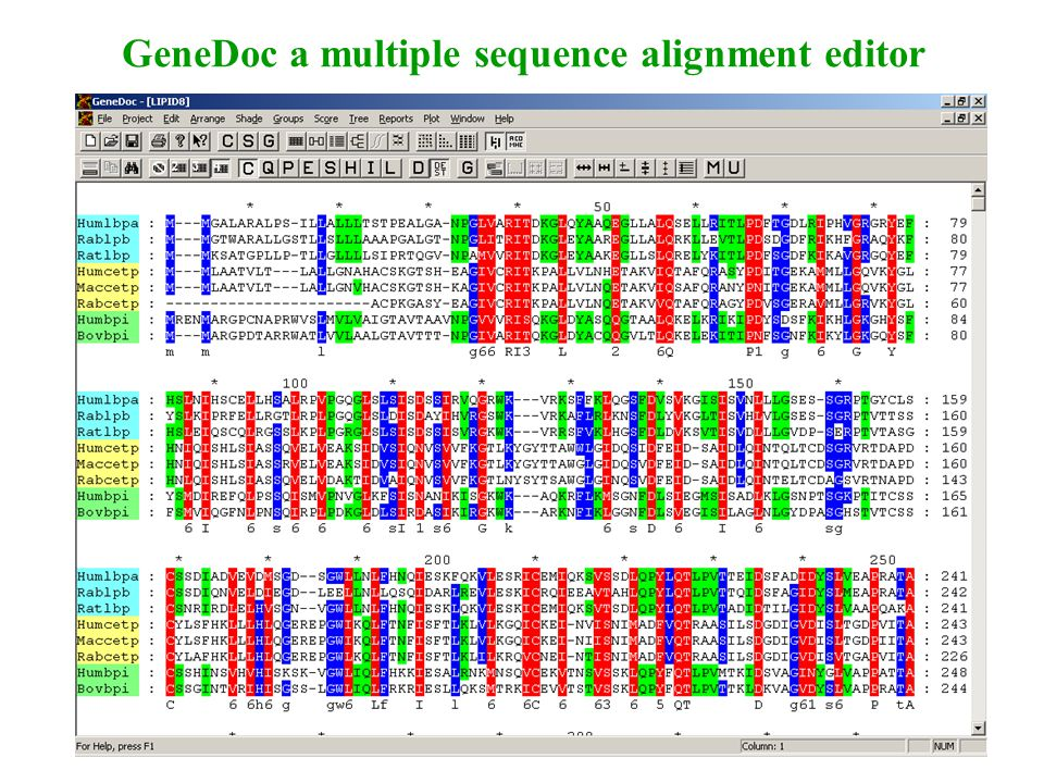 GeneDoc a multiple sequence alignment editor