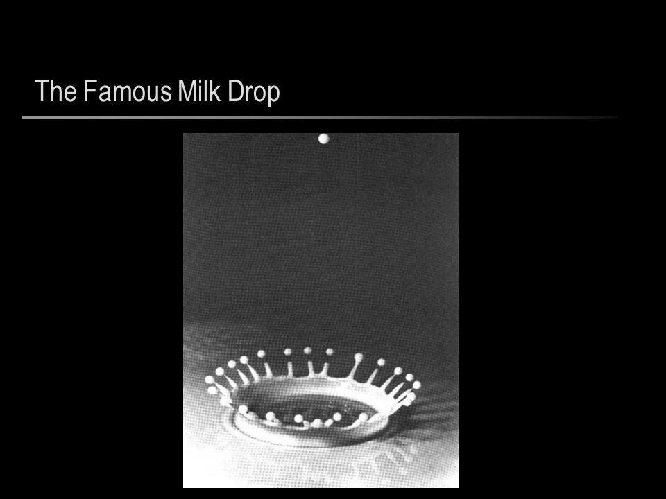 The Famous Milk Drop