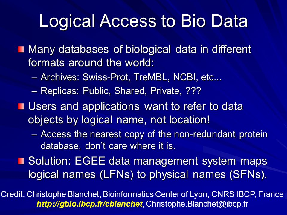 Logical Access to Bio Data Many databases of biological data in different formats around the world: –Archives: Swiss-Prot, TreMBL, NCBI, etc...