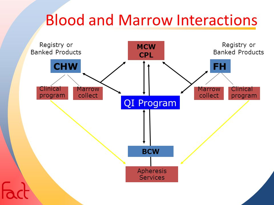 Blood and Marrow Interactions FH Clinical program CHW Clinical program BCW MCW CPL Marrow collect Marrow collect Registry or Banked Products QI Progra