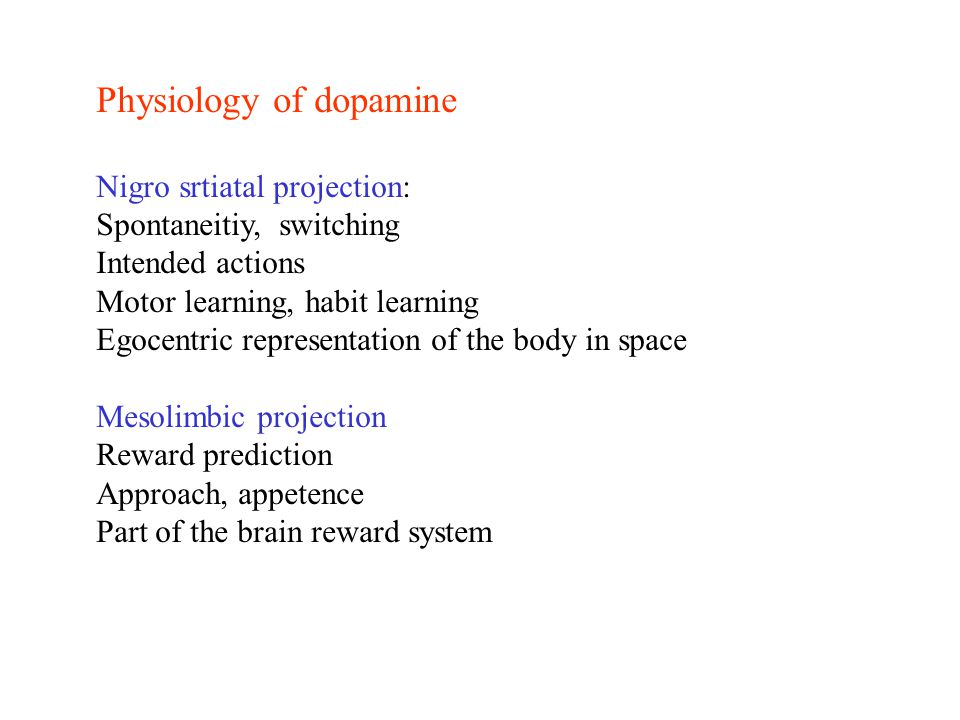 Physiology of dopamine Nigro srtiatal projection: Spontaneitiy, switching Intended actions Motor learning, habit learning Egocentric representation of