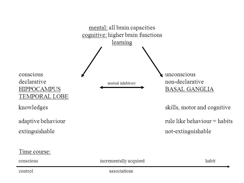 mental: all brain capacities cognitive: higher brain functions learning conscious declarative HIPPOCAMPUS TEMPORAL LOBE unconscious non-declarative BA