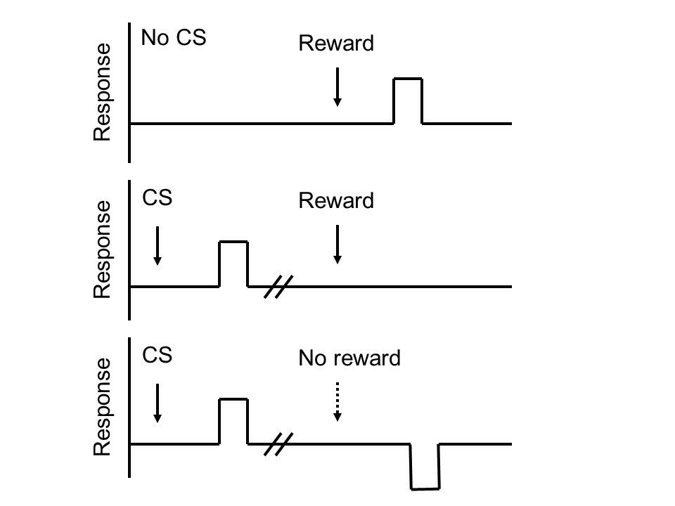Reward Response No CS Reward Response CS No reward Response CS