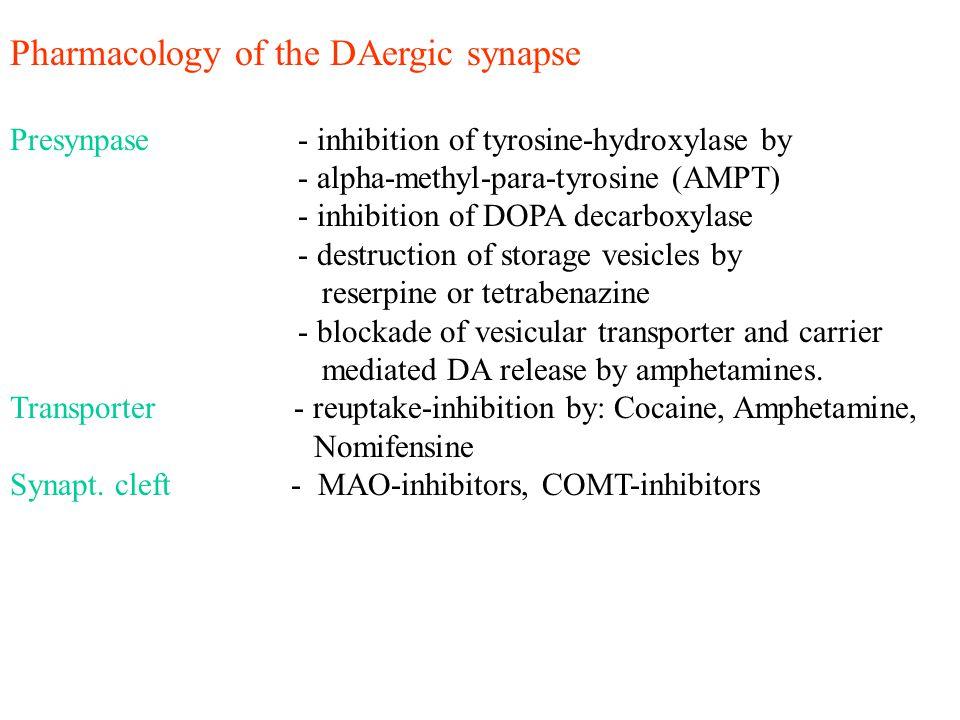 Pharmacology of the DAergic synapse Presynpase - inhibition of tyrosine-hydroxylase by - alpha-methyl-para-tyrosine (AMPT) - inhibition of DOPA decarb