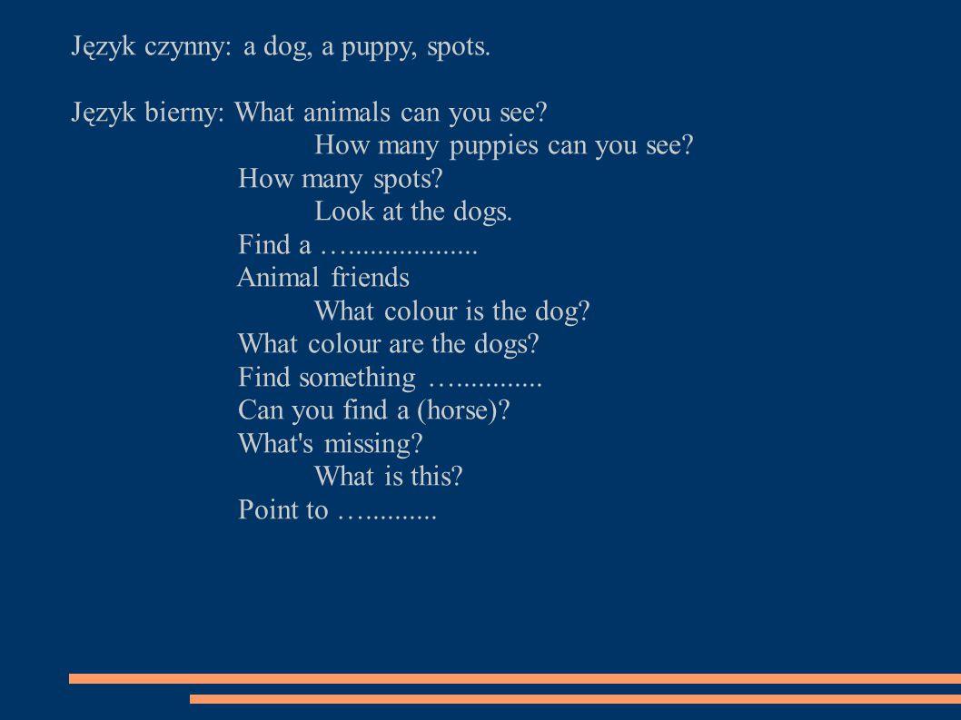 Język czynny: a dog, a puppy, spots. Język bierny: What animals can you see.