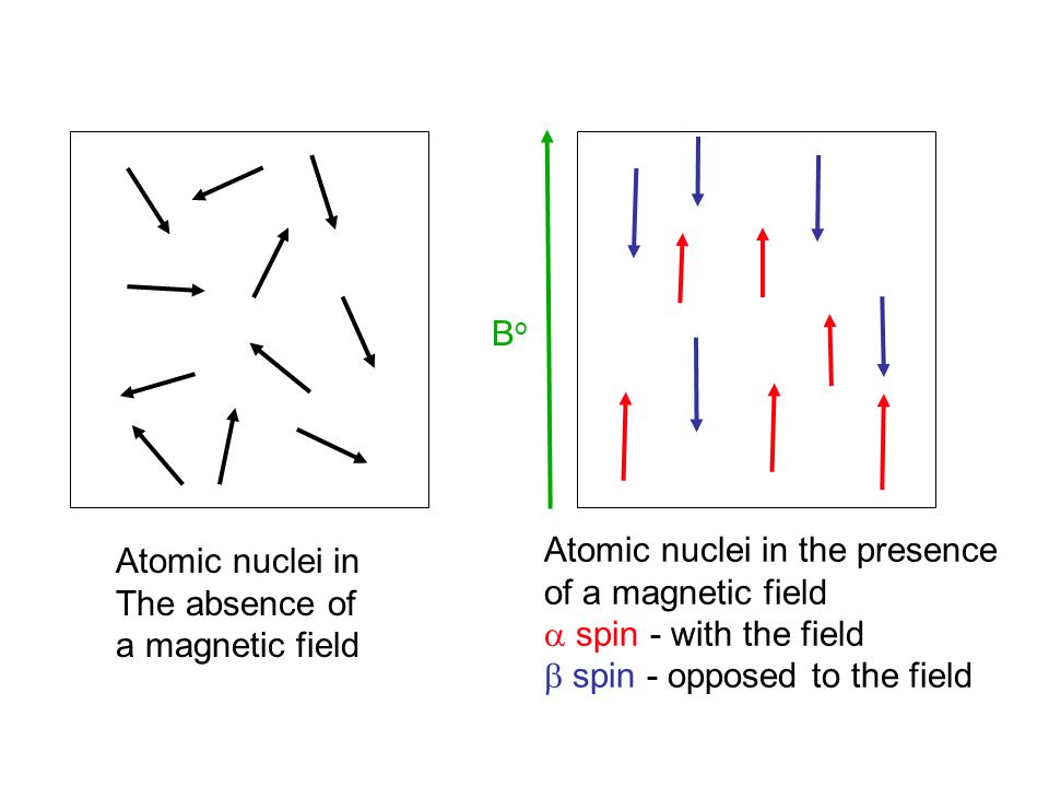 13 C Nuclear Magnetic Resonance 13 C Chemical Shifts