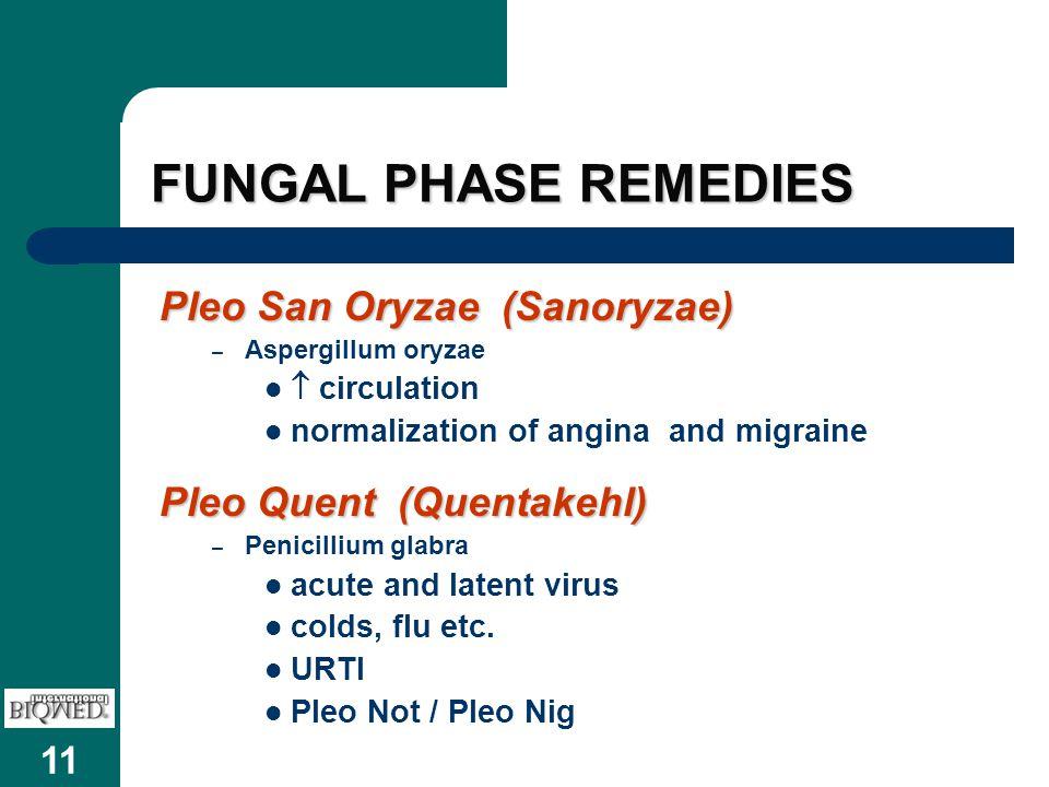 11 FUNGAL PHASE REMEDIES Pleo San Oryzae (Sanoryzae) – Aspergillum oryzae  circulation normalization of angina and migraine Pleo Quent (Quentakehl) – Penicillium glabra acute and latent virus colds, flu etc.