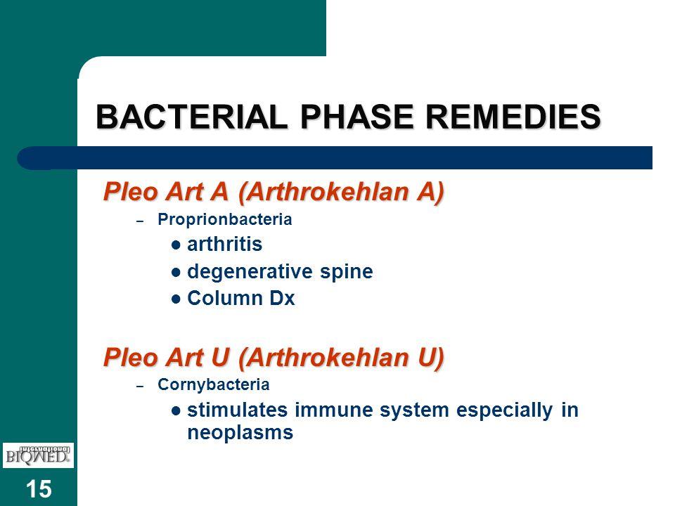 15 BACTERIAL PHASE REMEDIES Pleo Art A(Arthrokehlan A) – Proprionbacteria arthritis degenerative spine Column Dx Pleo Art U(Arthrokehlan U) – Cornybacteria stimulates immune system especially in neoplasms