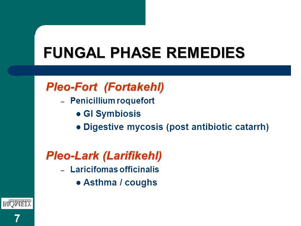 7 FUNGAL PHASE REMEDIES Pleo-Fort (Fortakehl) – Penicillium roquefort GI Symbiosis Digestive mycosis (post antibiotic catarrh) Pleo-Lark (Larifikehl) – Laricifomas officinalis Asthma / coughs