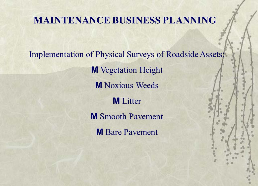 MAINTENANCE BUSINESS PLANNING Implementation of Physical Surveys of Roadside Assets: M Vegetation Height M Noxious Weeds M Litter M Smooth Pavement M Bare Pavement