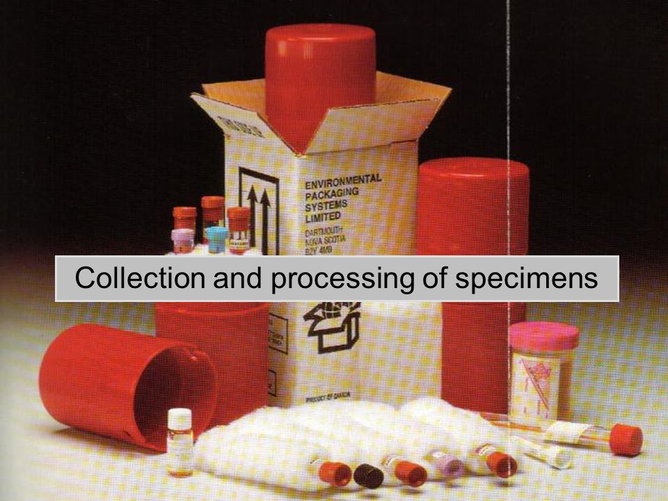 Collection and processing of specimens