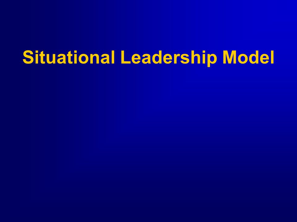 Interim Summary Directive/Supportive BehaviorDirective/Supportive Behavior Leadership VariablesLeadership Variables