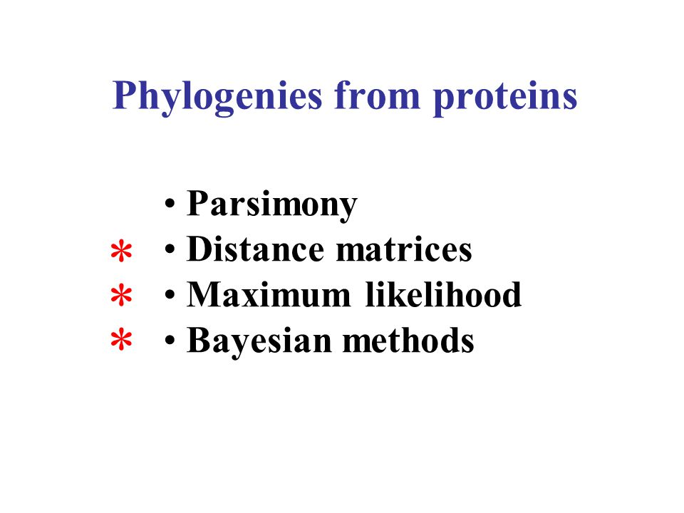 1.Rate matrix choice (20x20 matrices) –LG, WAG, BLOSSUM62, etc… 2.Recoding protein datasets –20x20 --> 6x6 rate matrix (or else) –Implemented in P4 and PhyloBayes v2.3 3.Models considering amino acid composition heterogeneity (CAT model, NDCH model) Model choice in protein analyses