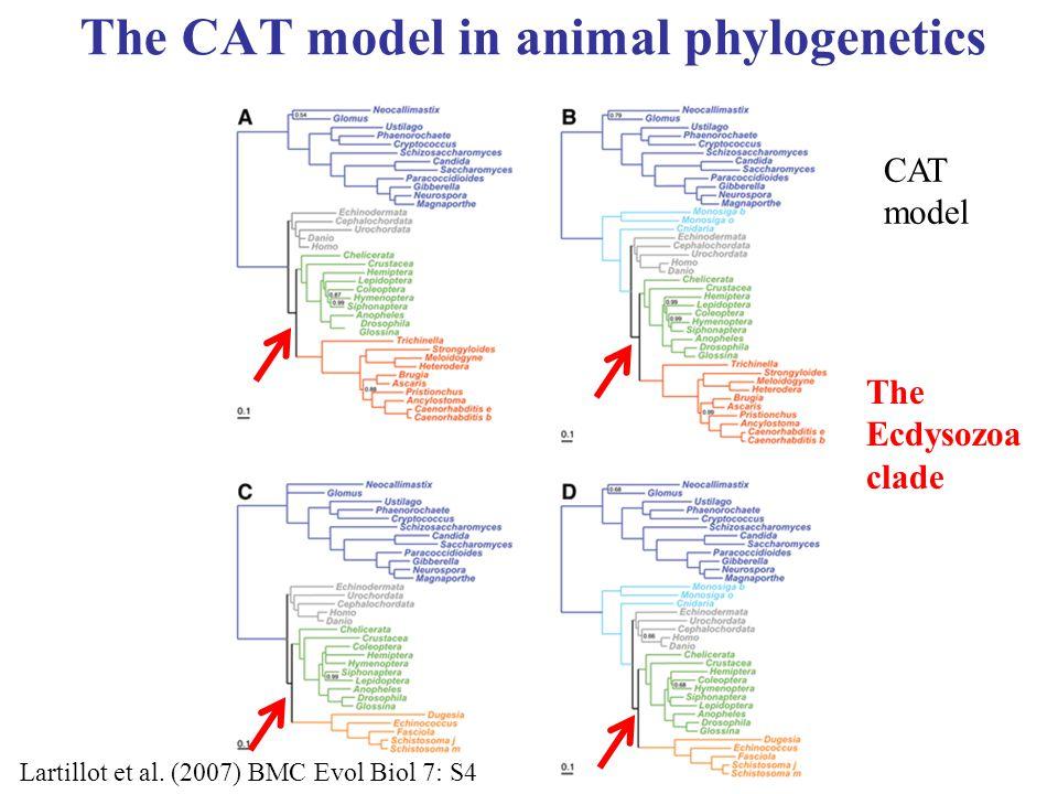 The CAT model in animal phylogenetics CAT model Lartillot et al.
