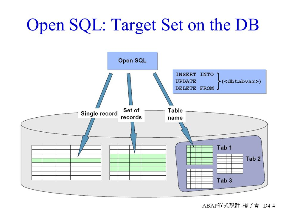 ABAP 程式設計 楊子青 D4-3 Open SQL: Portability and Buffering
