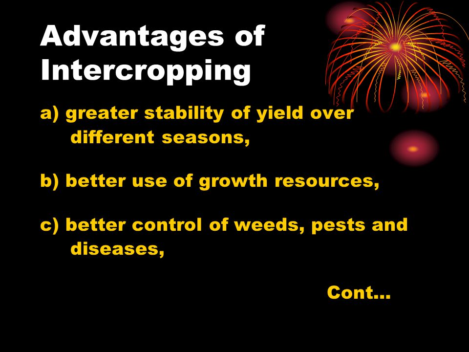Advantages of Intercropping a) greater stability of yield over different seasons, b) better use of growth resources, c) better control of weeds, pests and diseases, Cont…