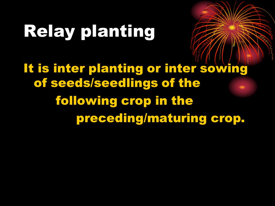 Relay planting It is inter planting or inter sowing of seeds/seedlings of the following crop in the preceding/maturing crop.