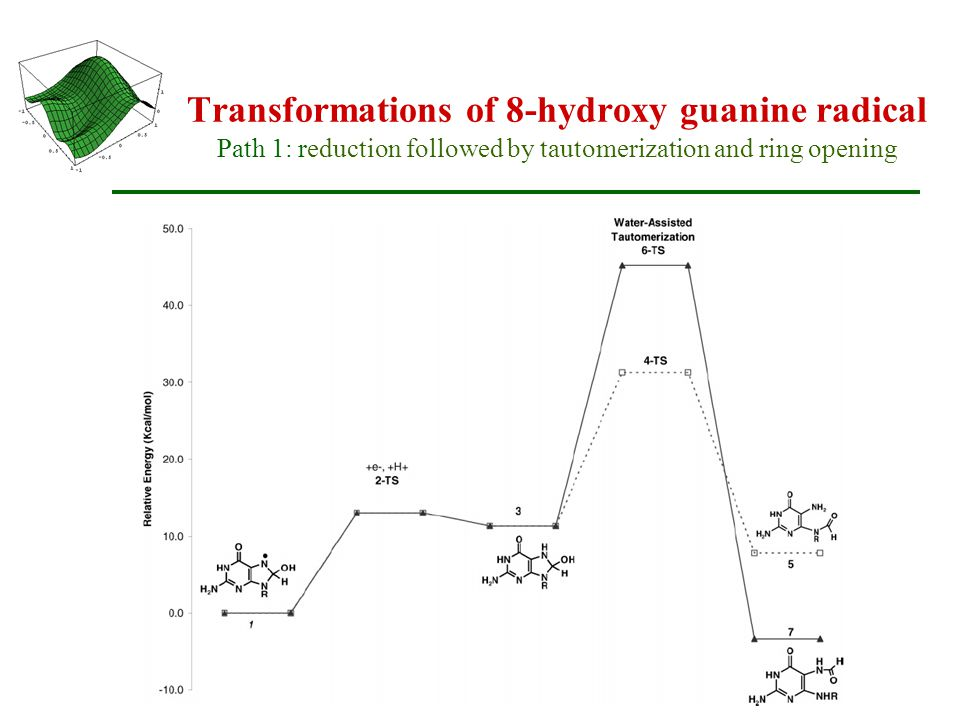 Transformations of 8-hydroxy guanine radical Path 1: reduction followed by tautomerization and ring opening