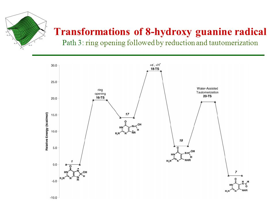 Transformations of 8-hydroxy guanine radical Path 3: ring opening followed by reduction and tautomerization