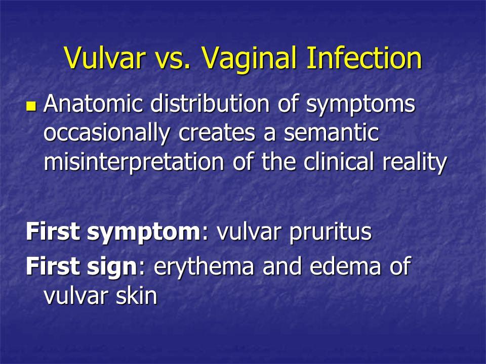 Vulvar vs. Vaginal Infection Anatomic distribution of symptoms occasionally creates a semantic misinterpretation of the clinical reality Anatomic dist