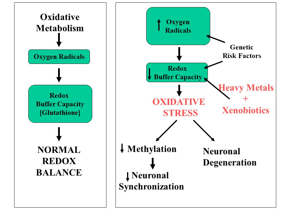 NORMAL REDOX BALANCE Redox Buffer Capacity [Glutathione] Oxygen Radicals Oxygen Radicals Redox Buffer Capacity OXIDATIVE STRESS Methylation Genetic Ri