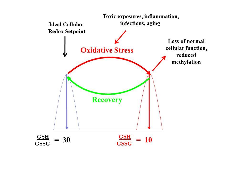 Oxidative Stress GSH GSSG = 30 GSH GSSG = 10 Ideal Cellular Redox Setpoint Loss of normal cellular function, reduced methylation Toxic exposures, infl