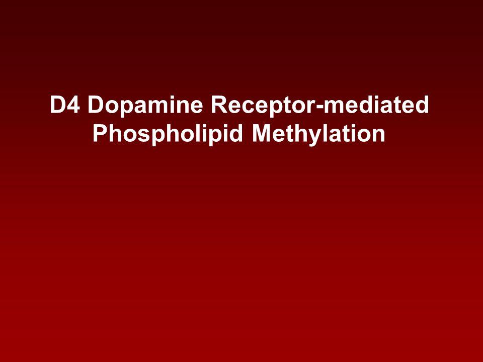 D4 Dopamine Receptor-mediated Phospholipid Methylation