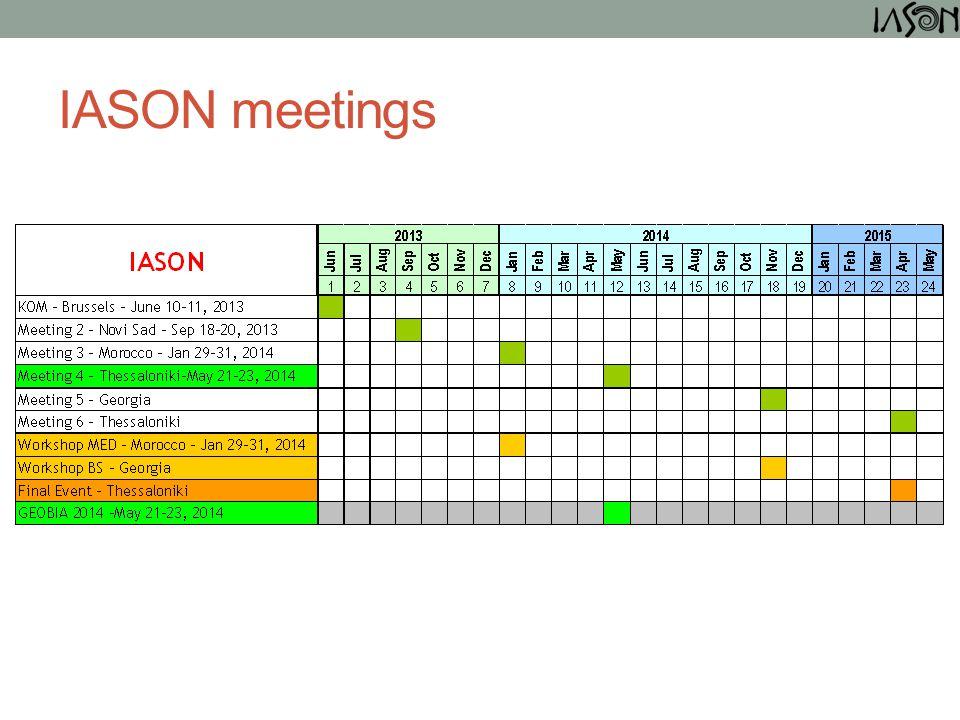 IASON meetings