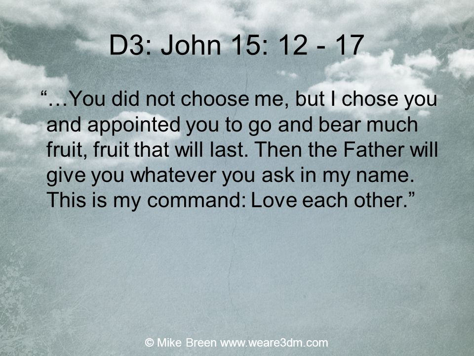 D3: John 15: 12 - 17 …You did not choose me, but I chose you and appointed you to go and bear much fruit, fruit that will last.