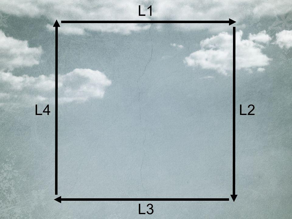 L1 L2 L3 L4