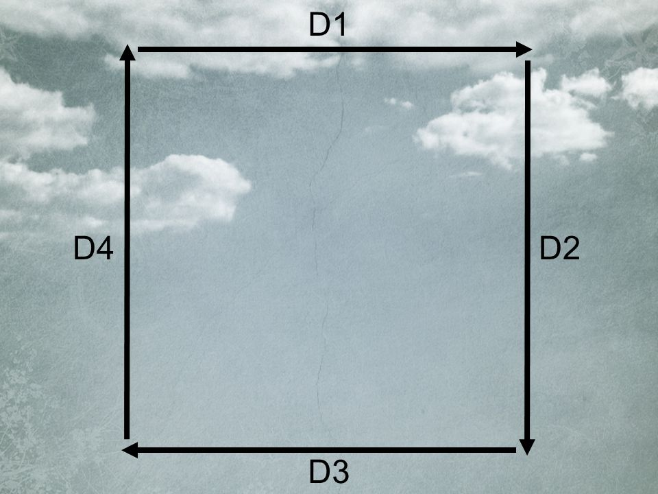 D1 D2 D3 D4