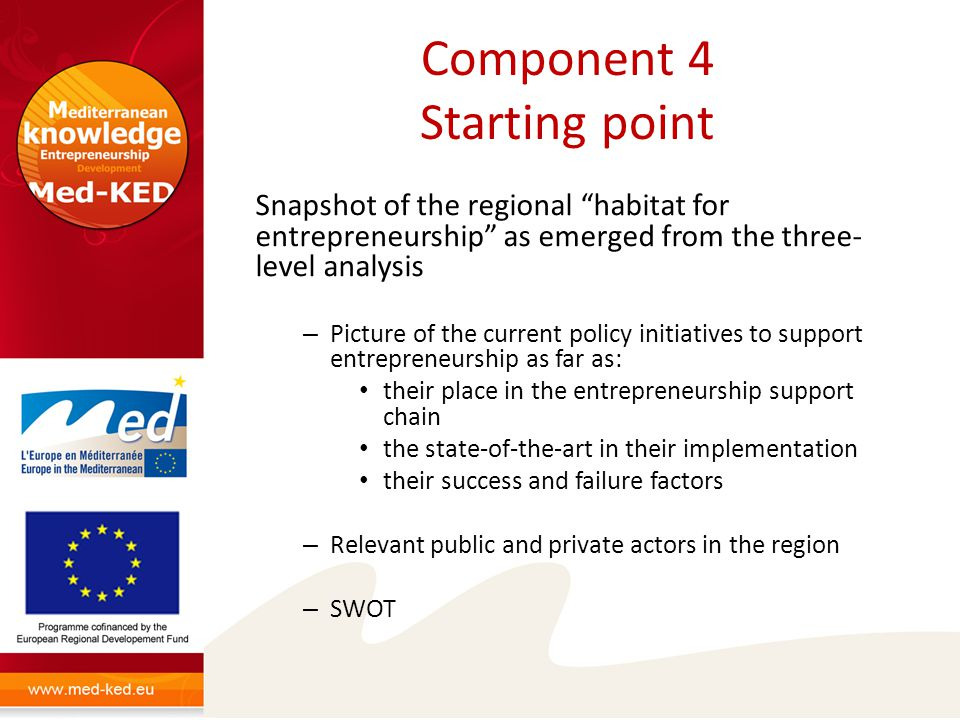 Component 4 Starting point Snapshot of the regional habitat for entrepreneurship as emerged from the three- level analysis – Picture of the current policy initiatives to support entrepreneurship as far as: their place in the entrepreneurship support chain the state-of-the-art in their implementation their success and failure factors – Relevant public and private actors in the region – SWOT