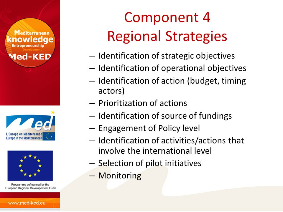 Component 4 Regional Strategies – Identification of strategic objectives – Identification of operational objectives – Identification of action (budget, timing actors) – Prioritization of actions – Identification of source of fundings – Engagement of Policy level – Identification of activities/actions that involve the international level – Selection of pilot initiatives – Monitoring