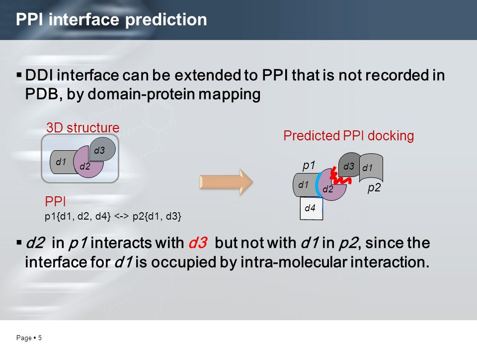 Page  5 PPI interface prediction  DDI interface can be extended to PPI that is not recorded in PDB, by domain-protein mapping  d2 in p1 interacts with d3 but not with d1 in p2, since the interface for d1 is occupied by intra-molecular interaction.