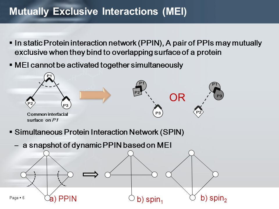 Page  6 Mutually Exclusive Interactions (MEI)  In static Protein interaction network (PPIN), A pair of PPIs may mutually exclusive when they bind to overlapping surface of a protein  MEI cannot be activated together simultaneously  Simultaneous Protein Interaction Network (SPIN) –a snapshot of dynamic PPIN based on MEI P2 P1 P3 Common interfacial surface on P1 P1 P3 P2 P1 P3 OR a) PPIN b) spin 1 b) spin 2