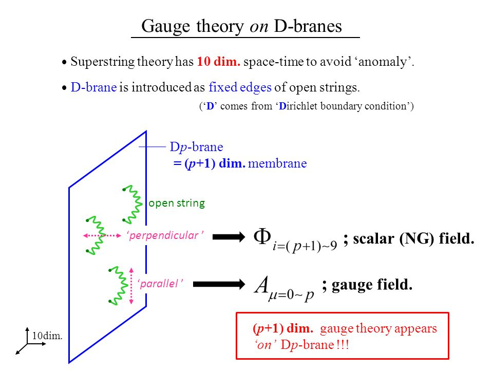 Gauge theory on D-branes Superstring theory has 10 dim.