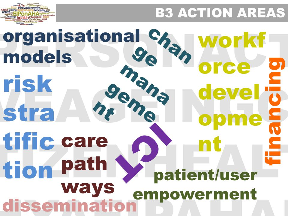 PERSONACTI VEAGEINGCI TIZENHEALT HYAEIPAHAI organisational models risk stra tific tion care path ways dissemination financing chan ge mana geme nt workf orce devel opme nt patient/user empowerment ICT B3 ACTION AREAS