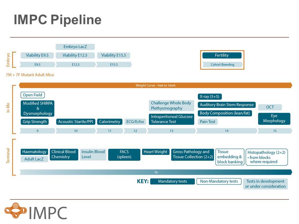IMPC Pipeline