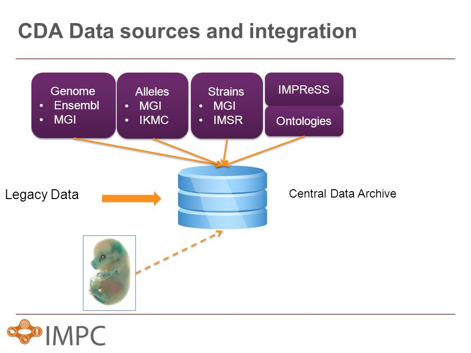 CDA Data sources and integration Genome Ensembl MGI Genome Ensembl MGI Alleles MGI IKMC Alleles MGI IKMC Strains MGI IMSR Strains MGI IMSR IMPReSS Ontologies Legacy Data Central Data Archive