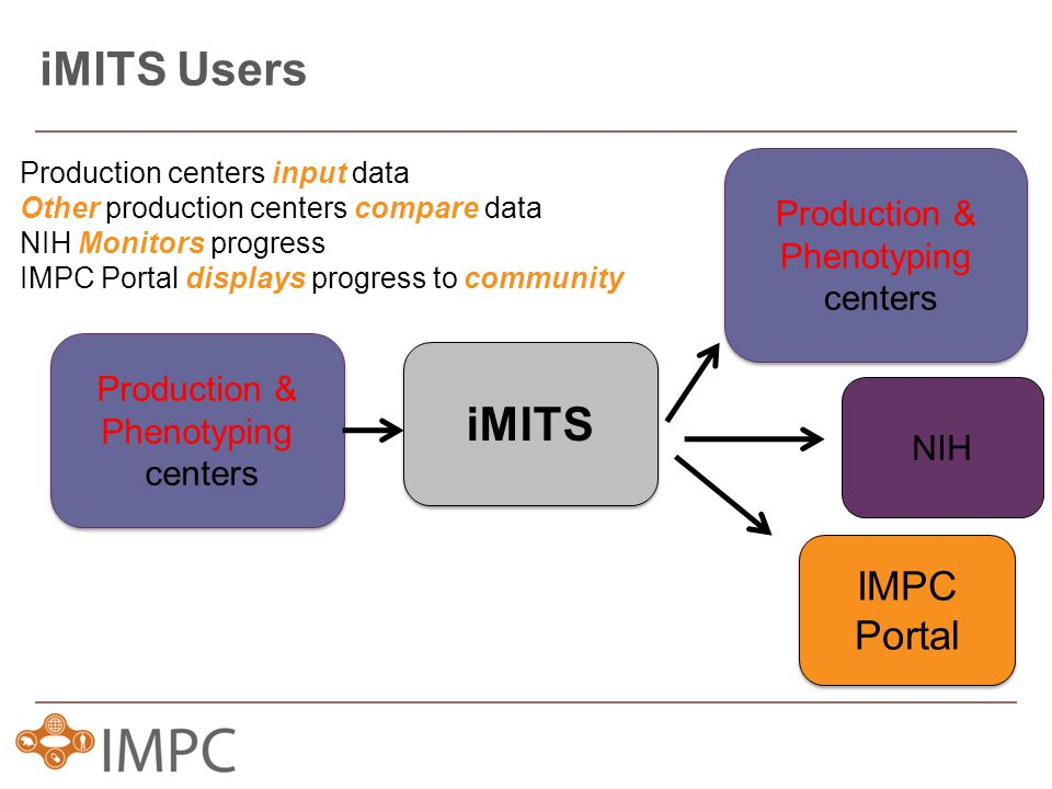 iMITS Users iMITS Production & Phenotyping centers Production & Phenotyping centers IMPC Portal IMPC Portal NIH Production & Phenotyping centers Production & Phenotyping centers Production centers input data Other production centers compare data NIH Monitors progress IMPC Portal displays progress to community