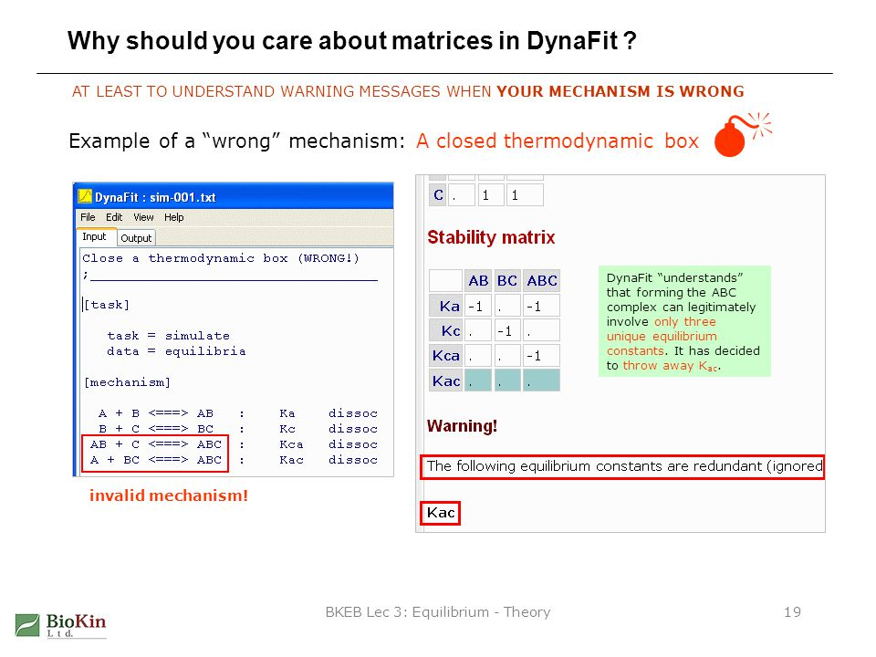 BKEB Lec 3: Equilibrium - Theory19 Why should you care about matrices in DynaFit .