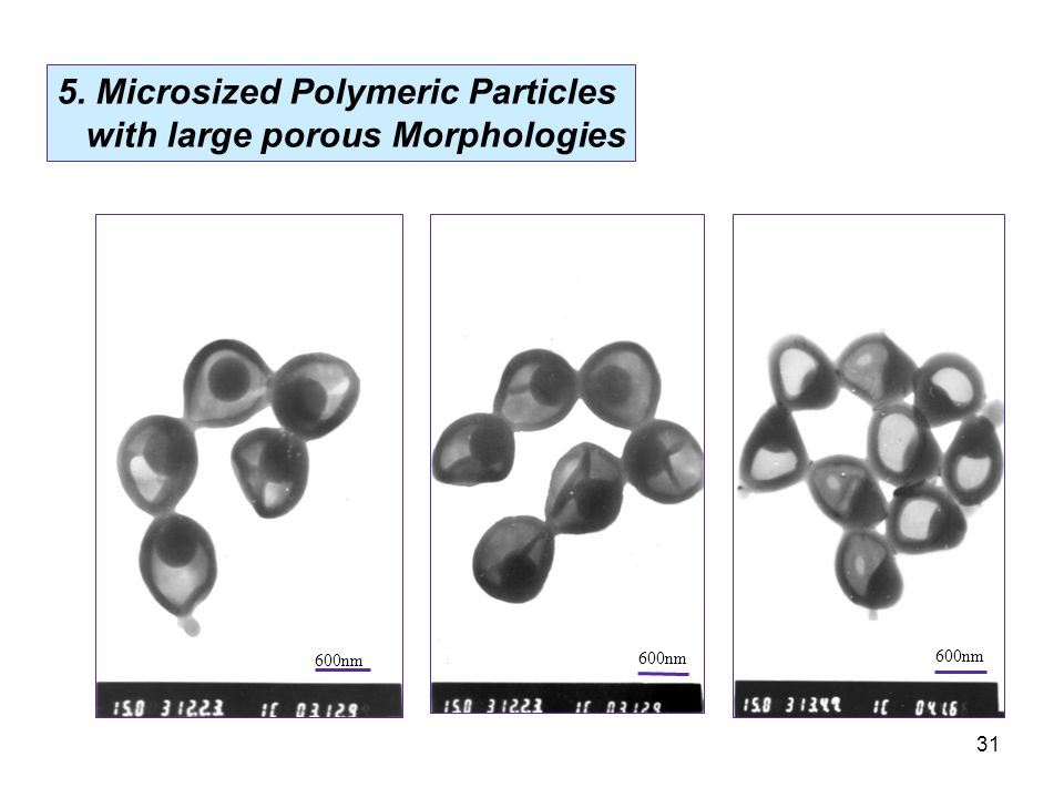 31 600nm 5. Microsized Polymeric Particles with large porous Morphologies