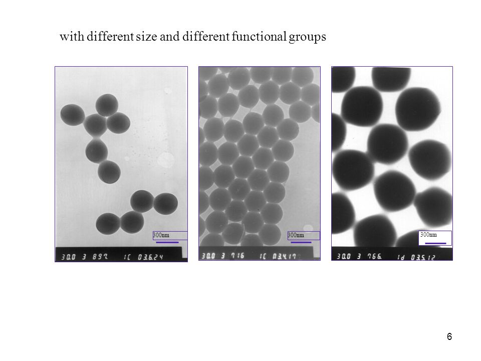 6 300nm with different size and different functional groups