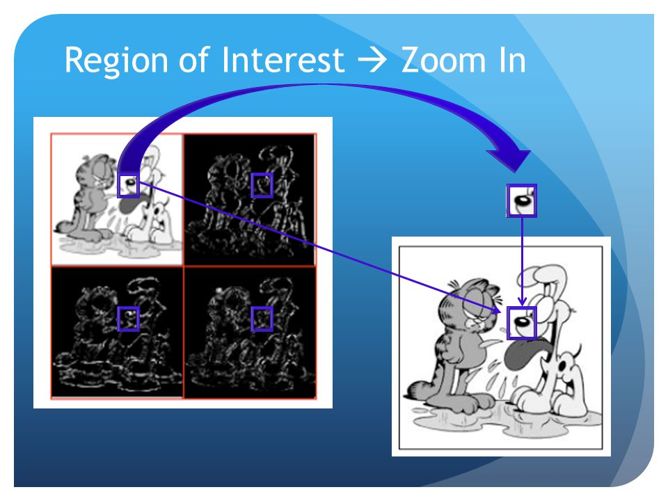 Region of Interest  Zoom In