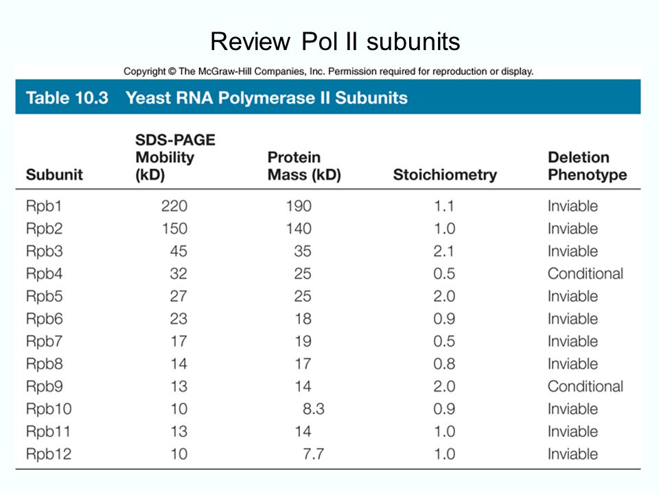 10-11 Review Pol II subunits