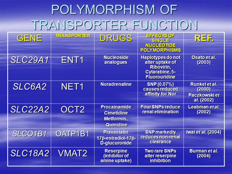POLYMORPHISM OF TRANSPORTER FUNCTION GENETRANSPORTERDRUGS EFFECTS OF SINGLE NUCLEOTIDE POLYMORPHISMS REF.