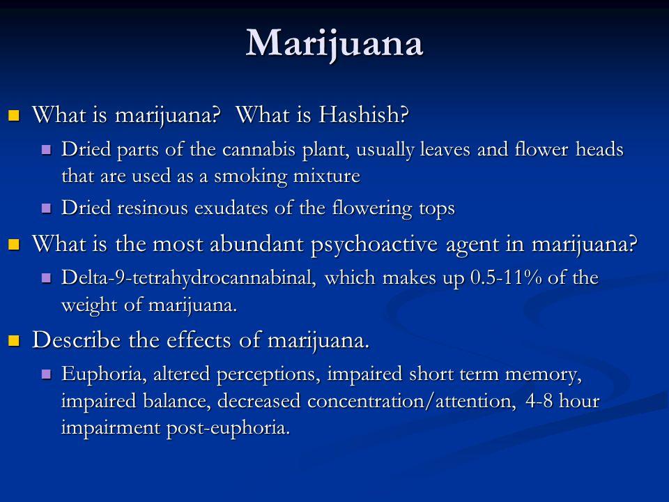 Marijuana What is marijuana? What is Hashish? What is marijuana? What is Hashish? Dried parts of the cannabis plant, usually leaves and flower heads t