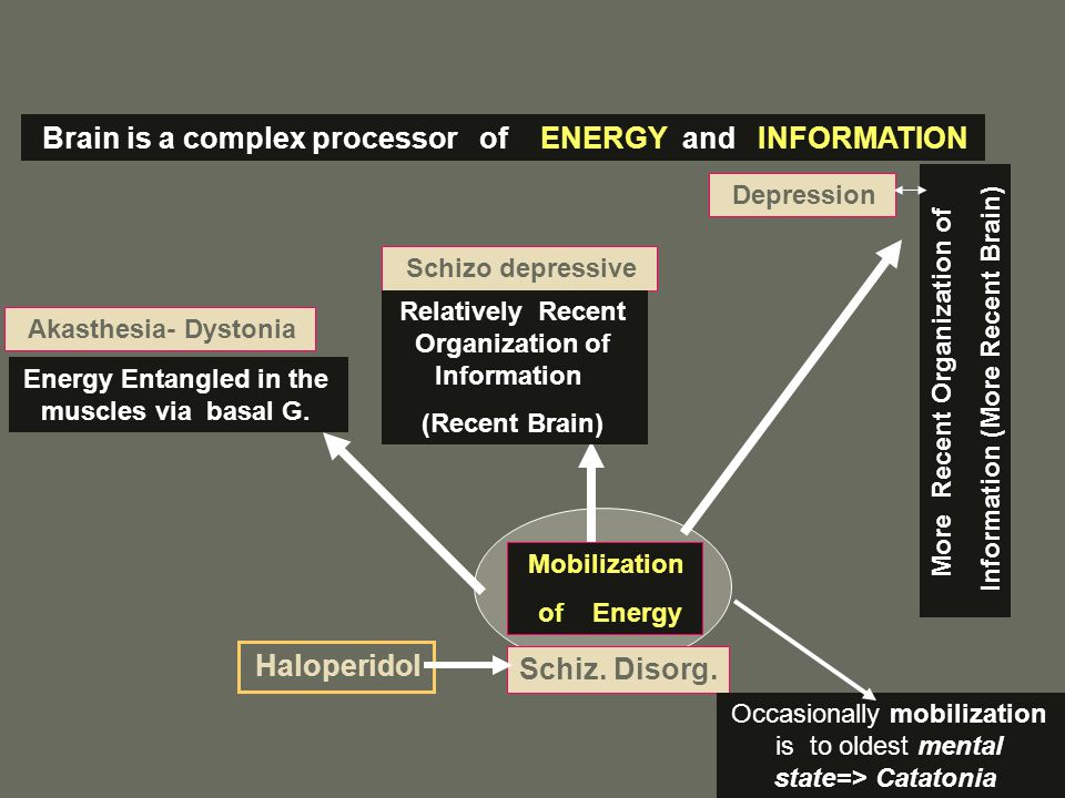 Energy Entangled in the muscles via basal G. Schizo depressive Depression Schiz. Disorg. Haloperidol Brain is a complex processor of ENERGY and INFORM