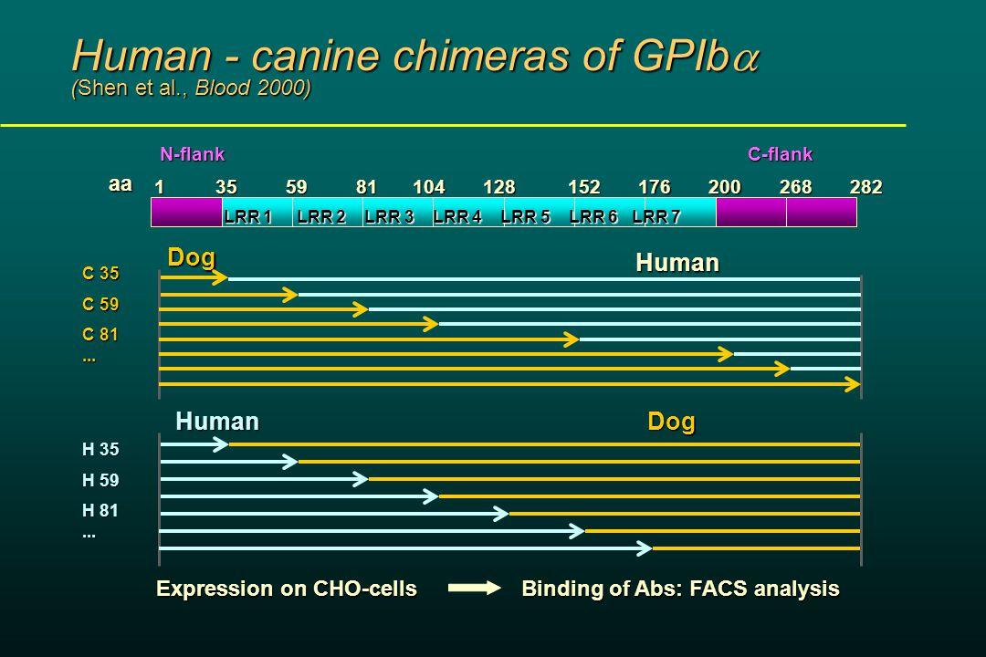 Human - canine chimeras of GPIb  (Shen et al., Blood 2000) LRR 1 LRR 2 LRR 3 LRR 4 LRR 5 LRR 6 LRR 7 1355981200104128152176268282 aa N-flank Human Dog C 35 C 59 C 81...